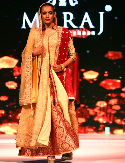Banarasi Indo-Western Gown